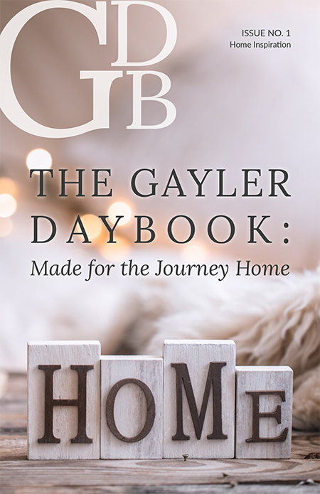 gayer-daybook-web-150ppi-cover.png